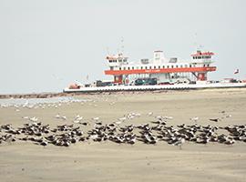 Galveston-Port Bolivar Ferry